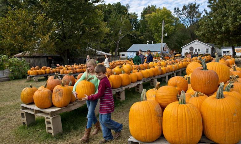 Pumpkin_Hollow_St_Francis_Fall_10142013_0316.jpg